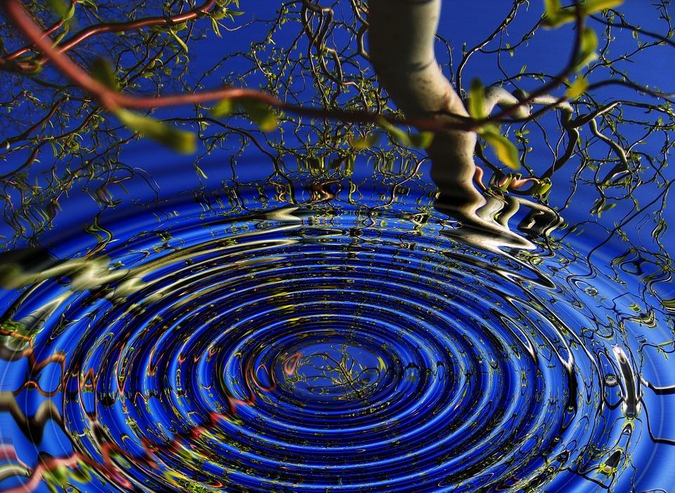 DHARMA: A FEJLŐDÉSHEZ VEZETŐ ÚT